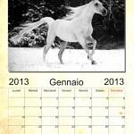 Scaricate gratis il calendario sui cavalli 2013, link all'interno