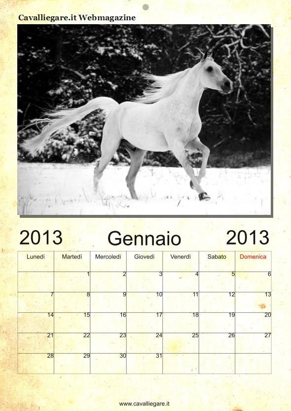 calendario cavalli 2013