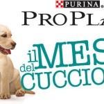 """Purina ProPlan regala kit omaggio per il """"Mese del cucciolo 2014"""""""