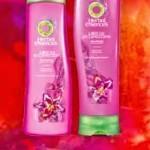 Campione omaggio dello shampoo Herbal Essence