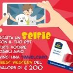 Magnete in omaggio e travel card in regalo dal valore 200 euro